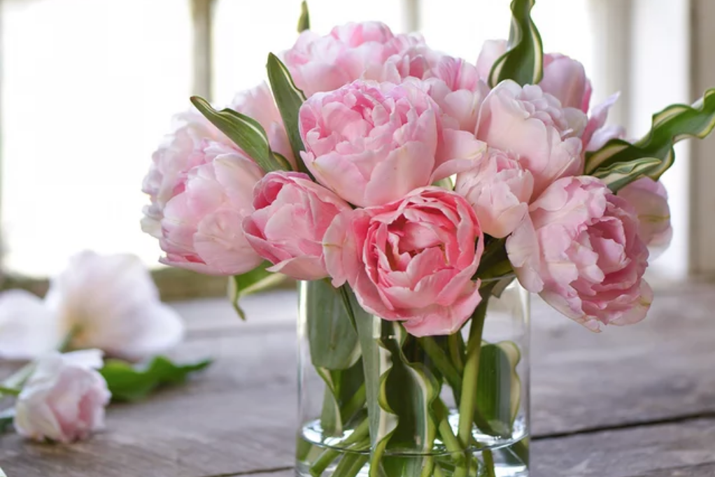 We're Obsessed with These Amazing Peony Look-Alikes