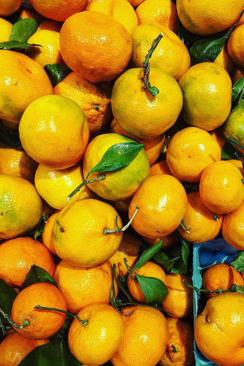 Our Five Favorite Ways to Use Satsumas