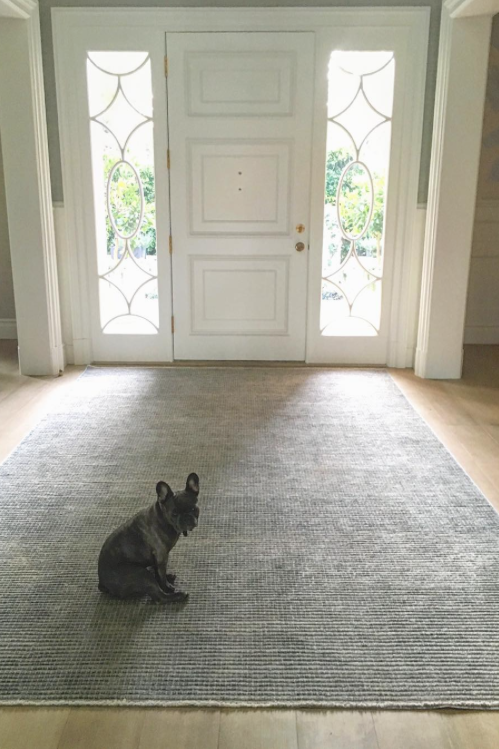 RX_1705_20 Times We Wished We Were Reese Witherspoon's Pups_Pepper Home Alone