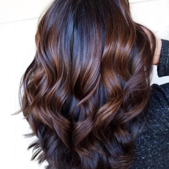 Midnight Roots with Triangular Chestnut Highlights