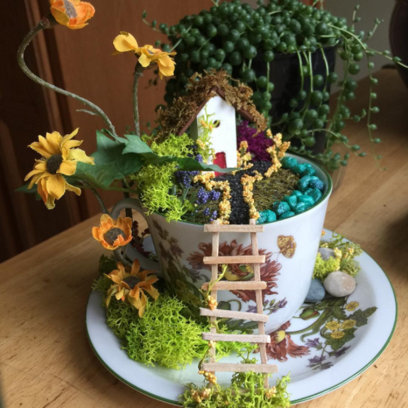 Teacup Fairy Gardens Are Your New Favorite Tabletop Terrarium